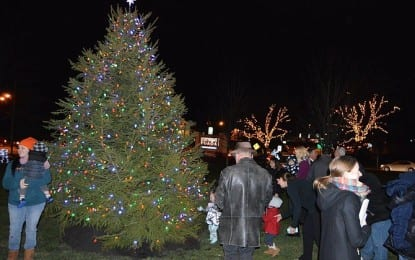 Stuyvesant Plaza celebrates first-ever lighting ceremony