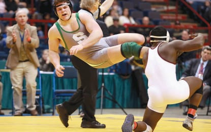 A look back at 2012 in Saratoga County sports (Part 1)