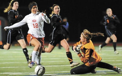 A look back at 2012 in Delmar/Guilderland sports (Part 2)