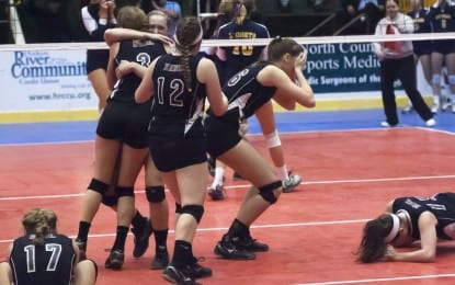 Girls volleyball: Determined Spartans repeat as state champions