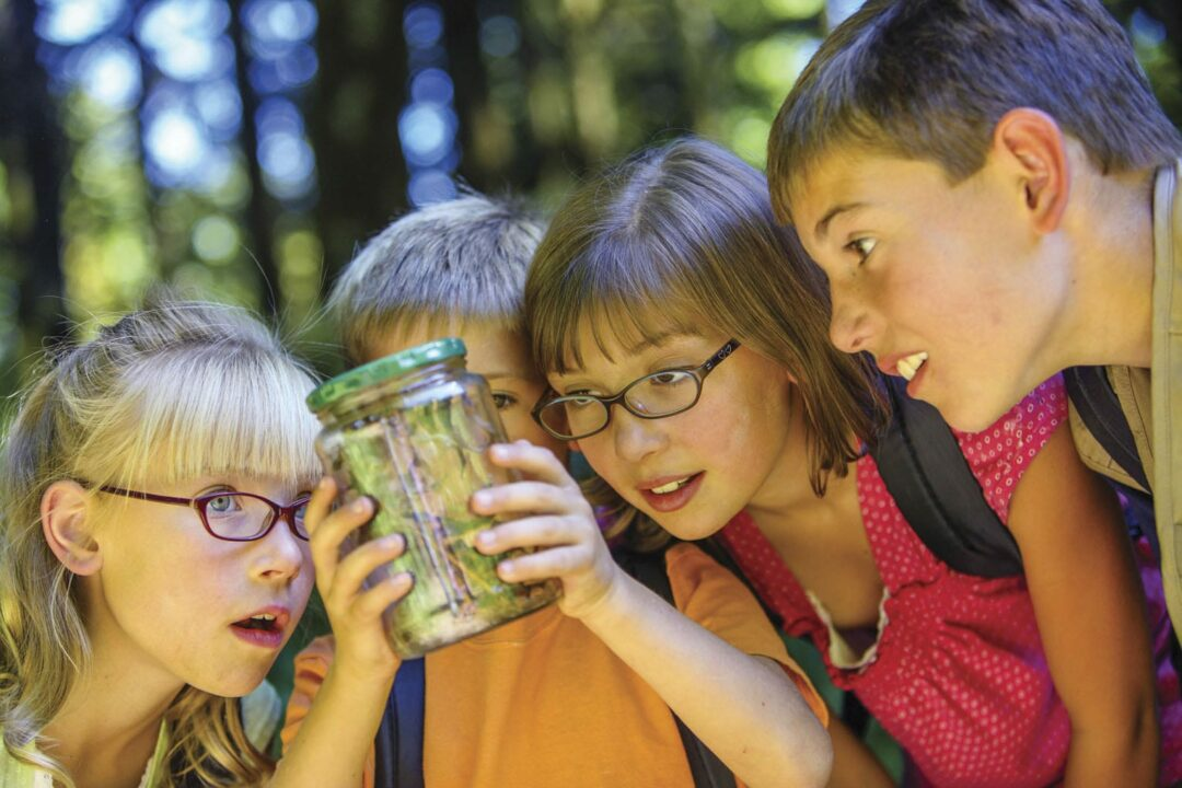 Parent Pages' 2015 Summer Camp Listing