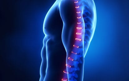 Getting to the root of spinal issues