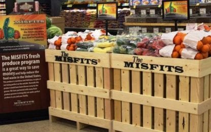 Business: Hannaford to sell 'Misfits'