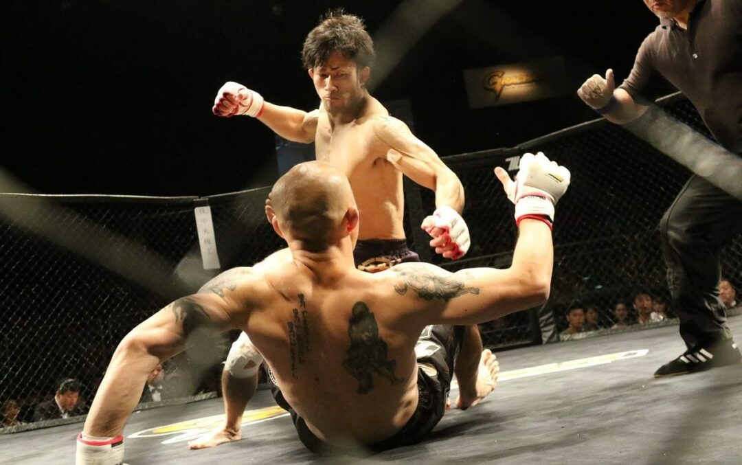 MMA comes to Capital District this weekend