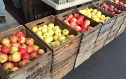 HOT SPOT: Farmer's Market at the library's Delaware Avenue branch