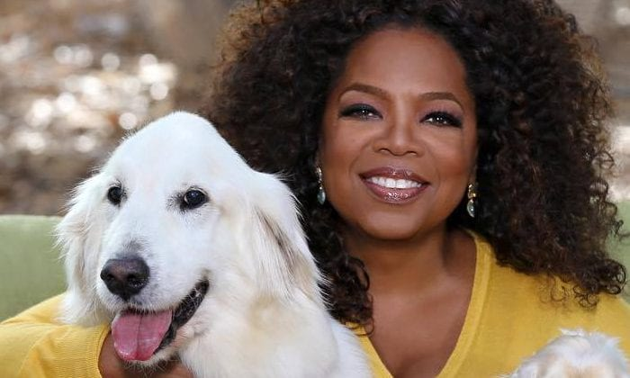 Oprah Winfrey to speak at Smith College commencement - Western Mass News - WGGB/WSHM