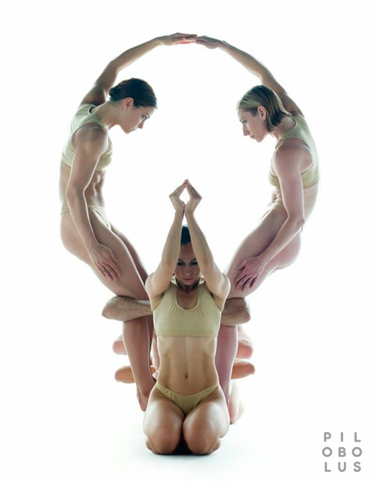PICK of the WEEK: Pilobolus Dance Theatre at The Egg on March 31