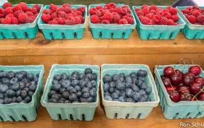 Cook Park Farmers Market opens Thursday, May 25