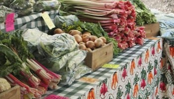 Colonie Farmers' Market opens Saturday at The Crossings