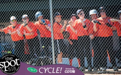 SPOTTED: Tri-Village in the state Little League tournament