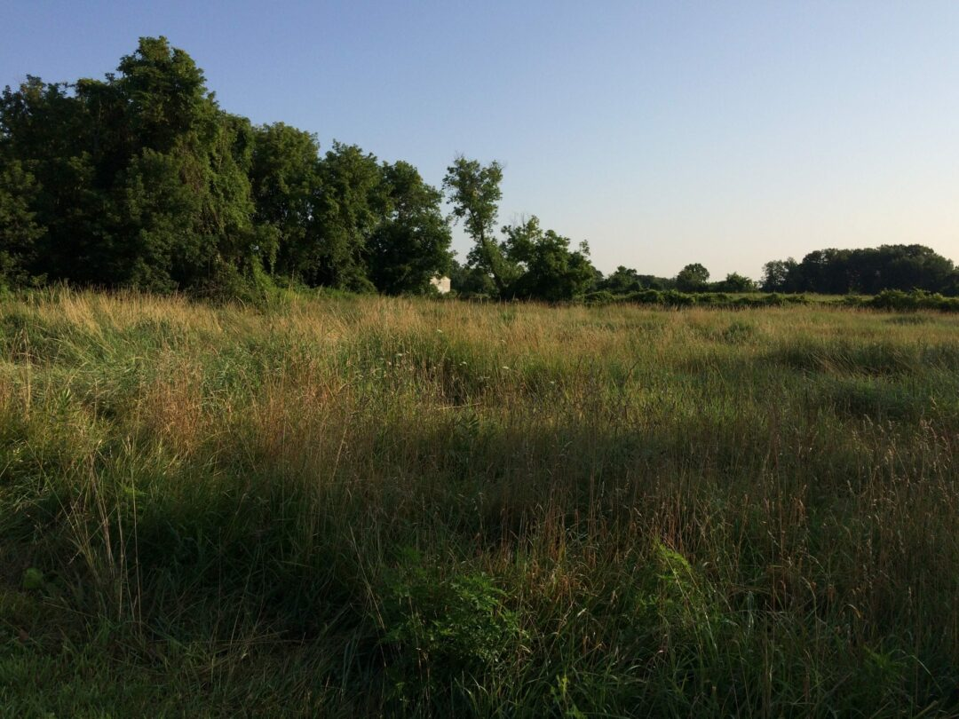 Kleinke family is at odds with widow under contract to sell part of farm to developer