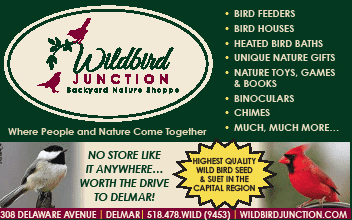 Wildbird Junction wants to bring nature into everyone's backyard