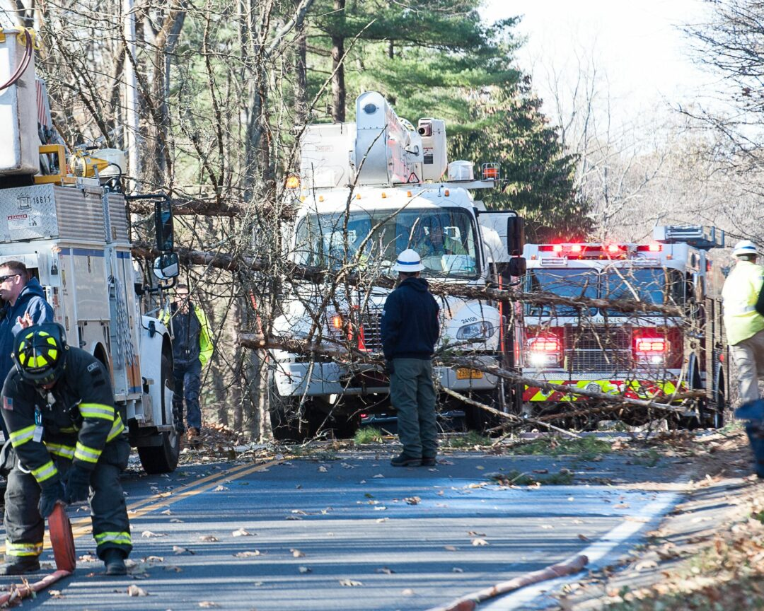 Tree knocks out power in Bethlehem (w/photo gallery)