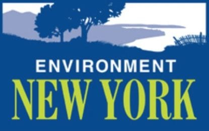 ENY releases congressional environmental scorecard
