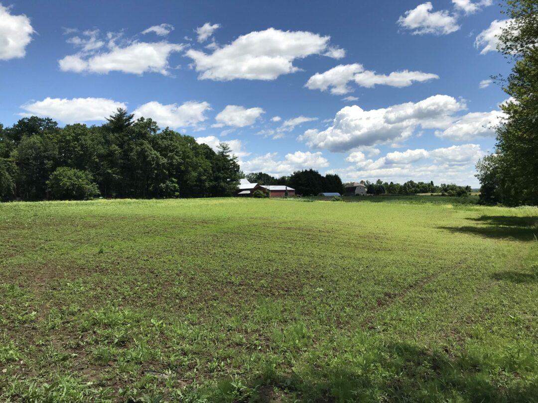 Proposed development on Kleinke farmland includes preservation, but family member wants more