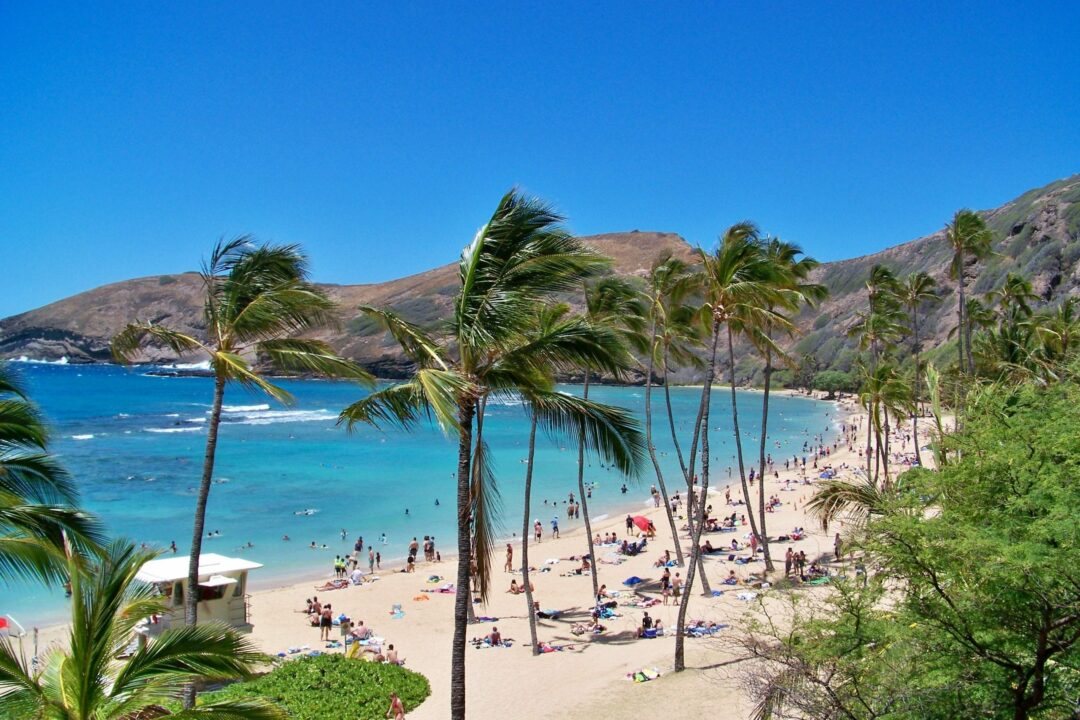 Albany native living on Hawaii says don't cancel your vacation