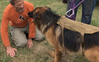 Dog rescued from Thacher Park ledge; reunited with owner