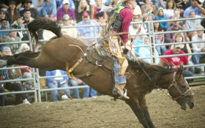 SPOTTED: Double M Professional Rodeo July 6