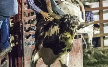 SPOTTED: Packed and Proud at Double M Professional Rodeo Aug 10 Veteran's Night