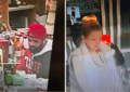 Police looking for two individuals in larceny investigation