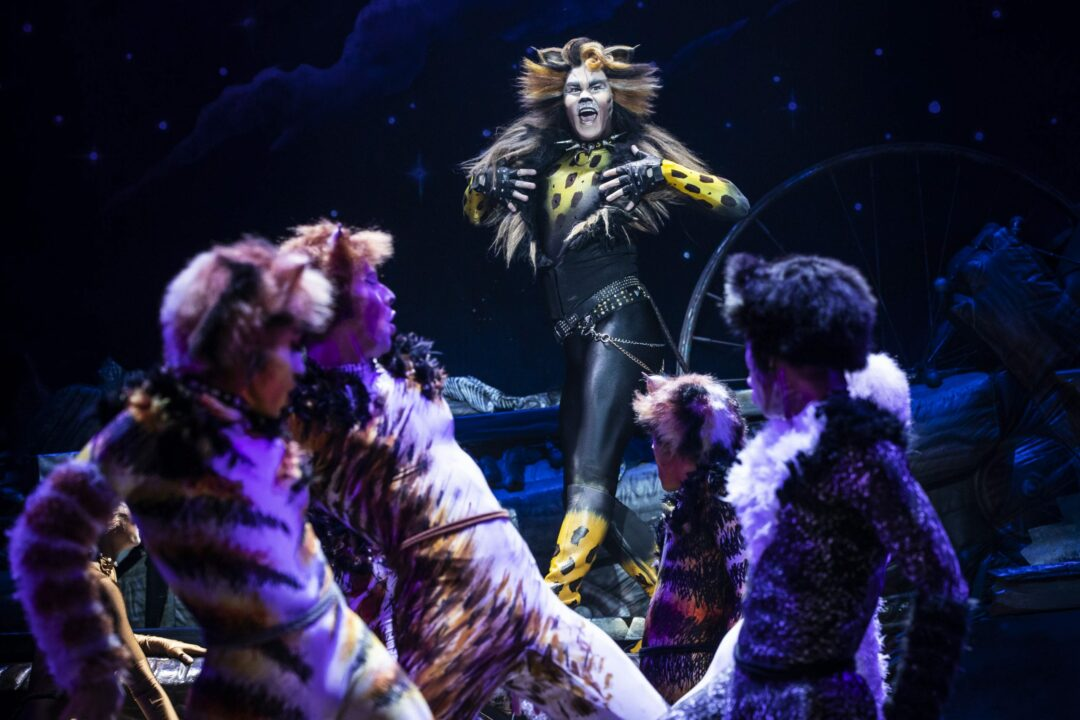 RECENTLY ANNOUNCED: Cats, Frozen and more, promised for upcoming season at Proctors, Capital Rep
