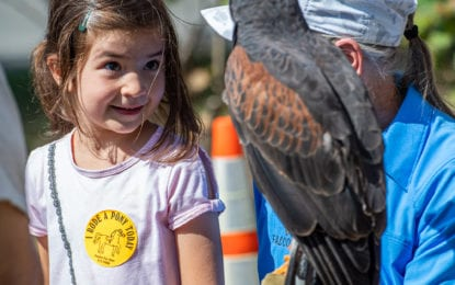SPOTTED: Fall in Colonie — Harvest Fest and the Shaker Heritage Society Craft Fair