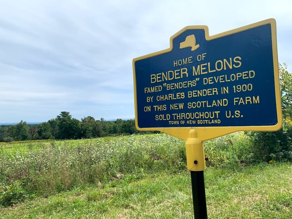 Land conservancy group eyes former Bender farm for $1.2M purchase
