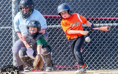 Little League World Series and all regional tournaments cancelled