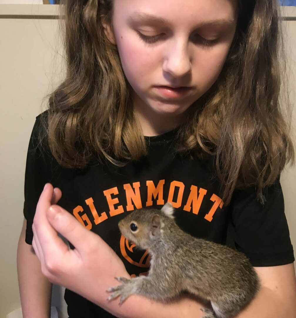 A Glenmont family nurses baby squirrel back to health, turns into a teachable moment