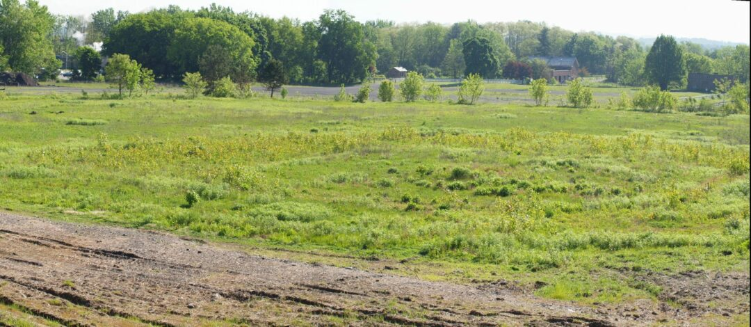 DISCOVER WOLF ROAD: What remains of Heritage Park continues to tell a story